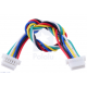 6-Pin Female-Female JST SH-Style Cable 10cm